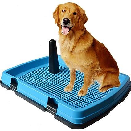 xueyan& Perros Grandes Perro Mascota Perro Orinal Orinal Tableta de Aseo Pañales para Perros Grandes no