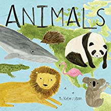 Animals (Discovery Concepts) (Touch & Learn)