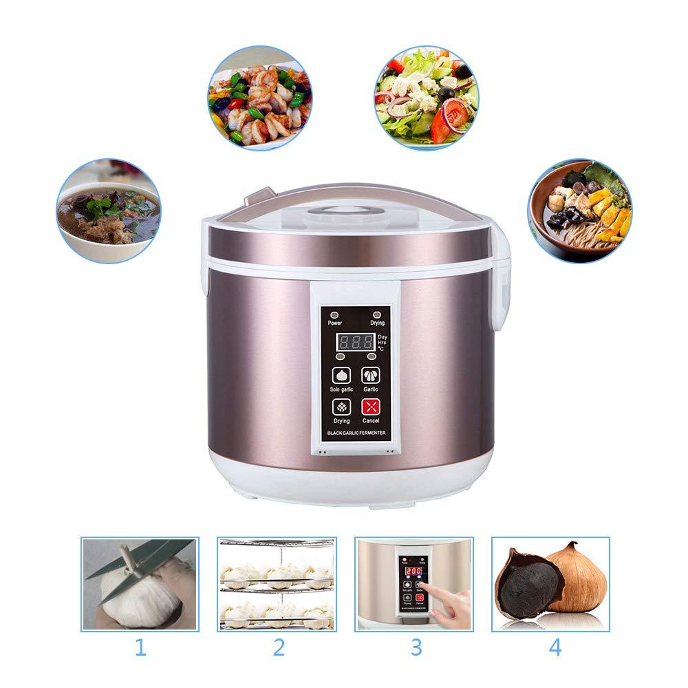 Machine de Fermentation Intelligente bo/îte de Fermentation de lail Noir Appareil m/énager//de Cuisine HUKOER Fermenteur Automatique de rendement /élev/é dail Noir