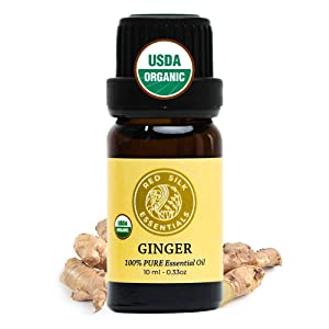 Red Silk Essentials USDA Organic Ginger Root Essential Oil, Pure Natural Aromatherapy for Digestion, Respiratory Support, Pain Relief - 10 ml