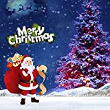 Brizled LED Christmas Lights, 100 LED 33 ft mini String Lights, 120V UL Certified for Indoor and Outdoor Decoration, Patio and Christmas Tree, Multi-Color