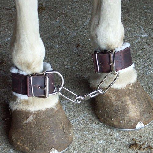 Intrepid International Fleece Lined Leather Horse - Horse Equipment