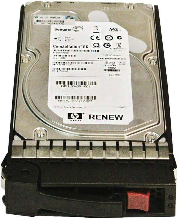 HP 2TB 6G SAS DP 7.2K 3.5 HDD 507616-B21 (Renewed)