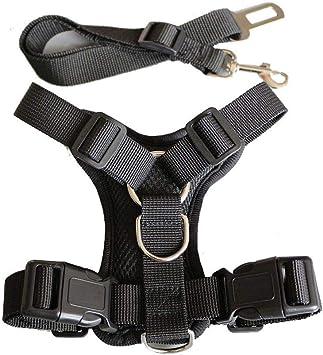 iBàste Chaleco para Mascotas, arnés para Perros, arnés, cinturón ...