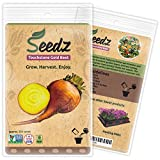 CERTIFIED NON-GMO SEEDS (Appr. 225) - Touchstone Gold Beet - Golden Beet Seeds, Open Pollinated - Untreated, Non Hybrid Vegetable Seeds - USA