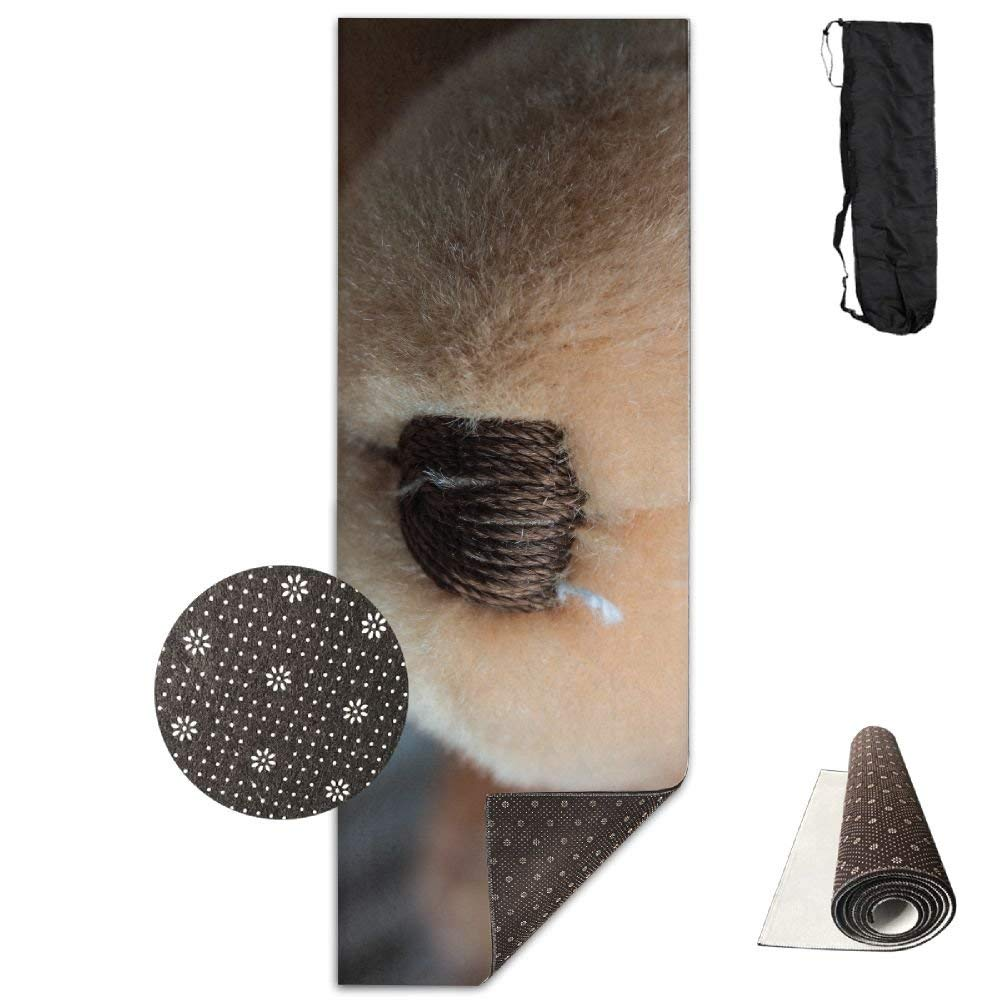 Amazon.com: Teddy Bear Nose Muzzle Material ECO Aqua Power ...