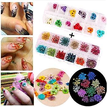 Amazon Xichen Nail Art Accessories 12 Color Three Dimensional