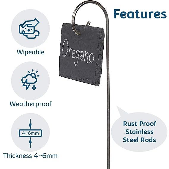 Amazon.com: Etiqueta de planta, 10 piezas de señalización de ...