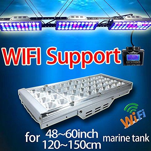 Coral Aquarium Lighting - 6