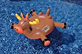 Swimline LOL Amazing Moose Pool Float - Best Reviews Guide