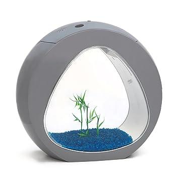 Pequeña pecera de Allpondsolution, con Nano Curva, Agua fría, iluminación LED Tropical: Amazon.es: Productos para mascotas