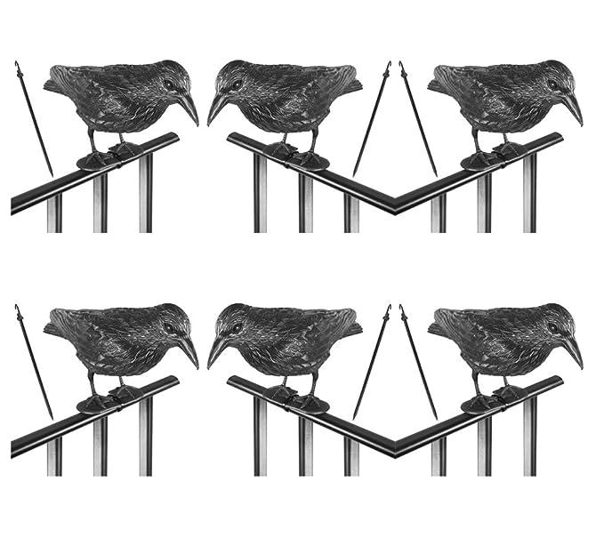 Taubenschreck Krähe 36 cm Rabe Taubenabwehr Vogelschreck Lockvogel AUSWAHL