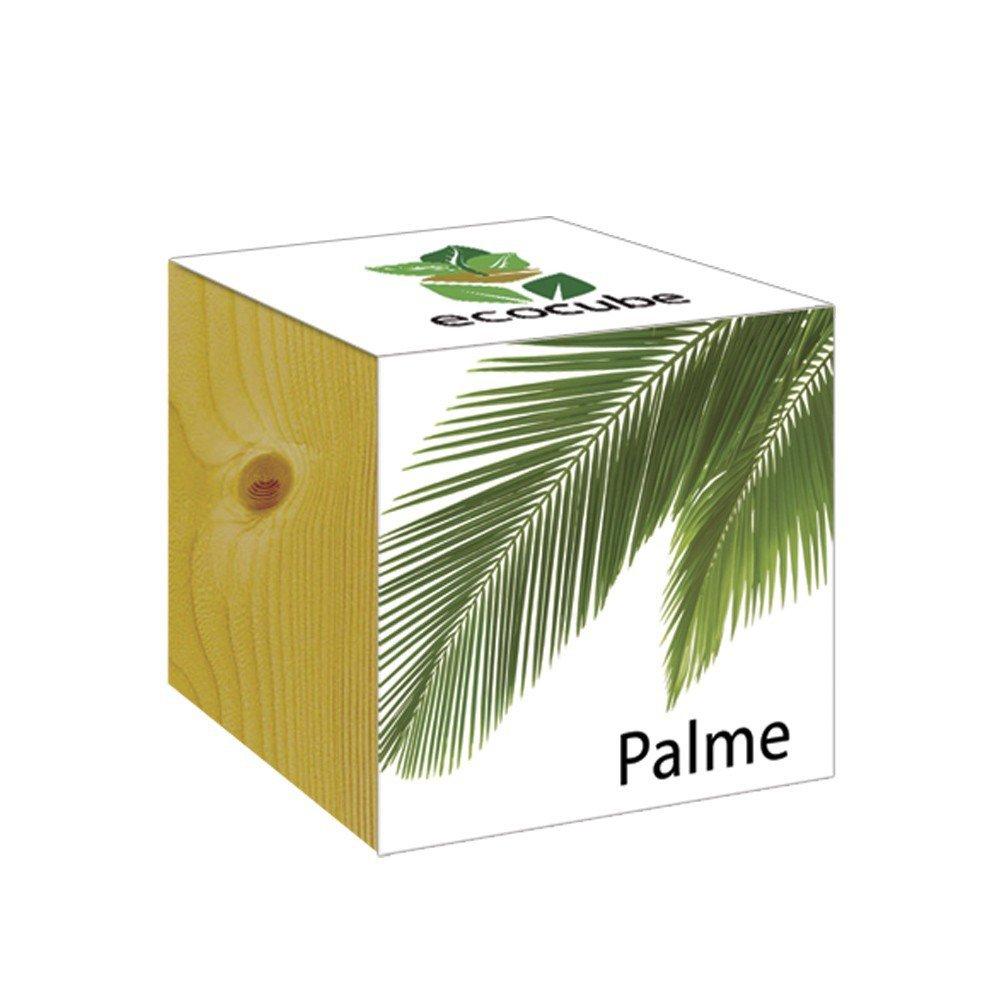 ecocube Holzwürfel - Palme Inventive Trading