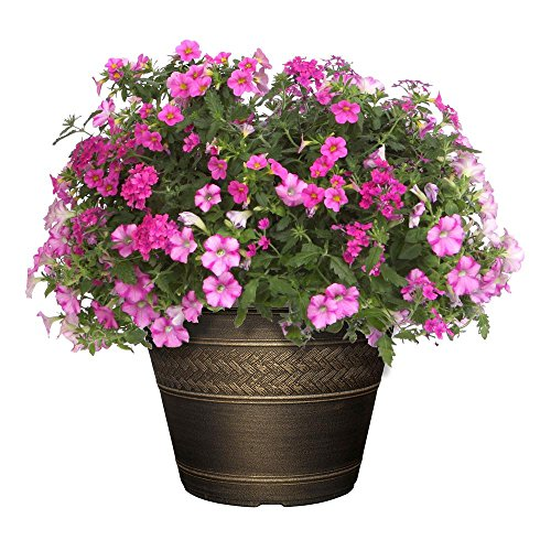 17 inch plastic rattan planter your pretty garden. Black Bedroom Furniture Sets. Home Design Ideas