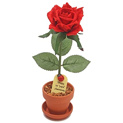 amazon com 1st first wedding anniversary gift potted paper rose we