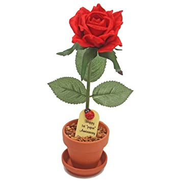 1st Year Wedding Anniversary Gift, Potted Paper Desk Rose, Perfect Present  for Wife or Husband
