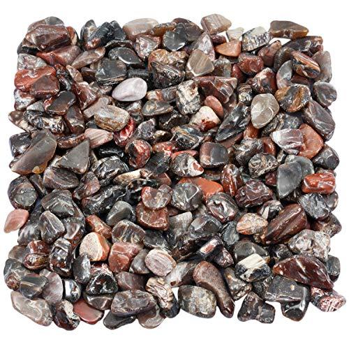 (TUMBEELLUWA 1LB Chips Tumbled Stones Crushed Reiki Irregular Shaped Healing Crystal Quartz Decoration,Petrified Wood)