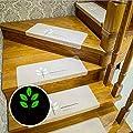 "Ehonestbuy Leaves Pattern Luminous Carpet Stair Tread Mats - (21.65""x8.66"") | Durable, Mute, Non-slip Protection, Shine at Night"