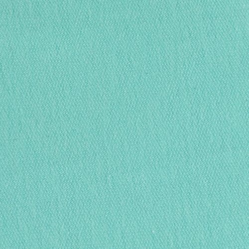 Lavitex French Terry Mint Fabric By The Yard