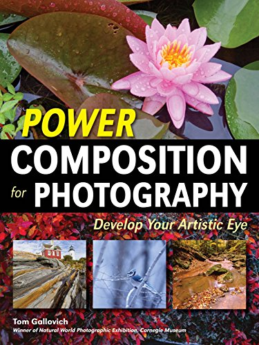 Power Composition for Photography: Develop Your Artistic Eye (Power Composition For Photography)
