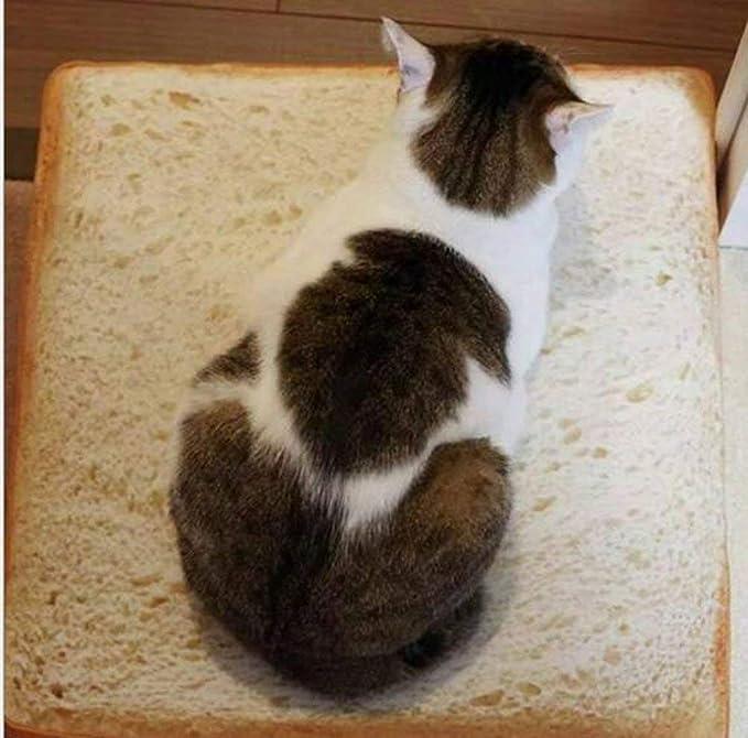 QZSKY 食パン型ソファ ペット用ベット 食パン クッション マット 猫用ソファ 犬用クション ふわふわ 食パンソファベッド 食パン型座布団 猫用ベッド 四季通用 高品質 40 * 40cm