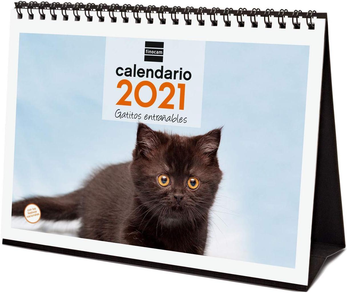 Finocam - Calendario de sobremesa 2021 Escribir Imágenes Gatitos Español