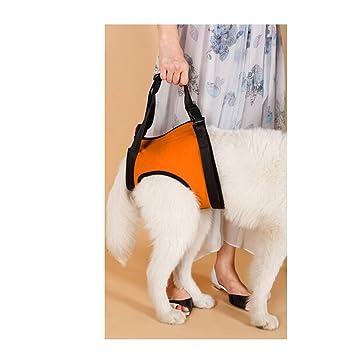 Fuloon médica perro delante transportista arnés/arnés de ayuda ...