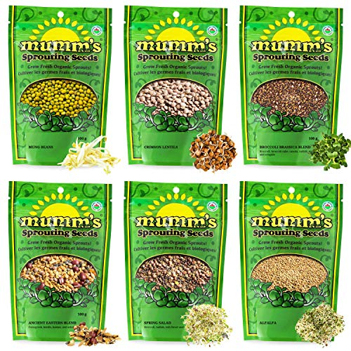 Mumm's Sprouting Seeds - Starter Sample Pack - 625 GR - Organic Sprout Seed Kit - Broccoli, Radish, Alfalfa, Mung Bean ()