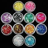 nail making - 12 Colors Nail Glitter Ice Mylar Shell Foil Slice Nail Art Decoration Tools (12 color)