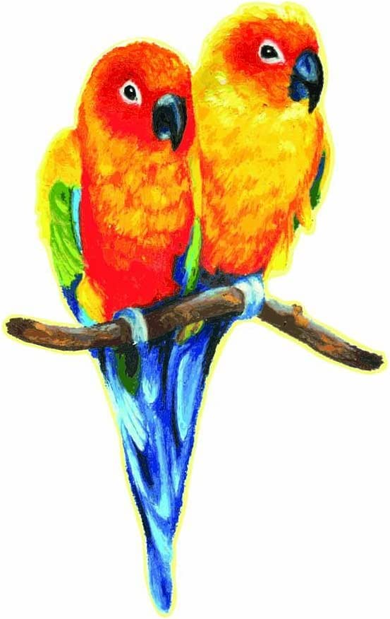"Love Birds Sun Conure Parakeets Perched Design Full Color - 5"" Vinyl Decal for Car, Macbook, or Other Laptop"