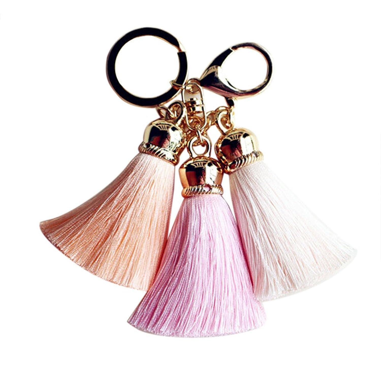 Best Deal New Fashion Cute Ice Silk Colourful Tassel Car Keychain Handbag Key Ring Gift 1Pc^Pink