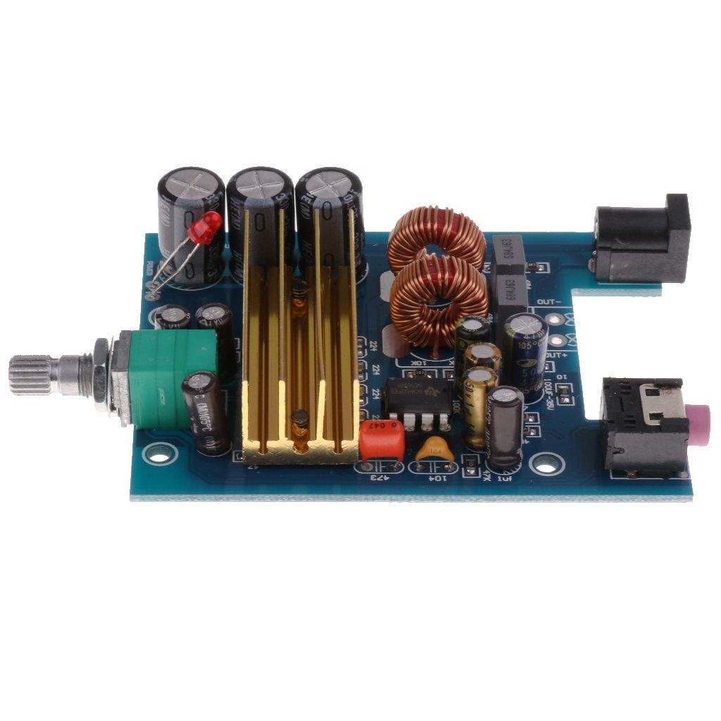 F Fityle Tablero de Amplificador de Potencia de Subwoofer Fuente de Alimentación: DC 8 ~ 25V; Potencia de salida: 100W
