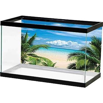 Amazon Com Fish Tank Background Tropical Decor Beach Relaxation