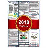 2018 Virginia State and Federal Labor Law Poster - Laminated 27'' x 40''