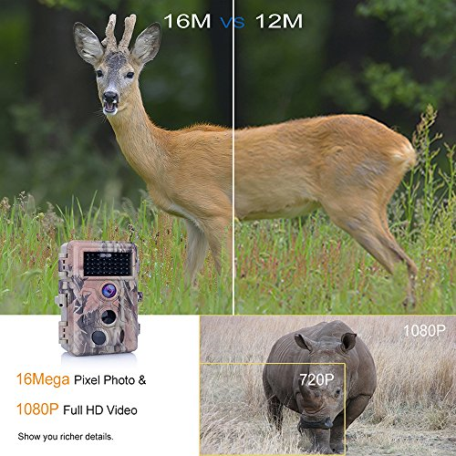 Review Zopu Trail Camera 16MP