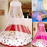 How Big Is a Cal King Bed Elegant Lace Bed Canopy Mosquito Net (White)