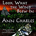 Look What the Wind Blew In: A Dig Site Mystery, Book 1 Audiobook by Ann Charles Narrated by Lisa Larsen