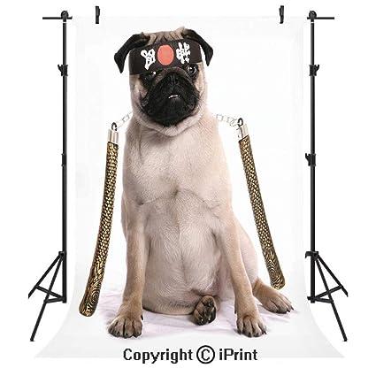 Amazon.com : Pug Photography Backdrops, Ninja Puppy with ...