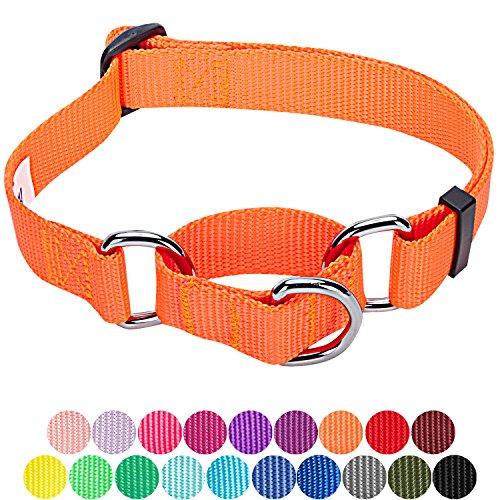 ors Safety Training Martingale Dog Collar, Florence Orange, Large, Heavy Duty Nylon Adjustable Collars for Dogs ()