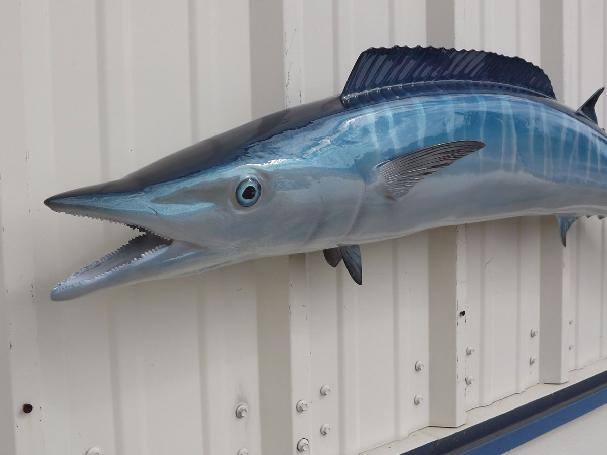 Mount This Fish Company 54'' Wahoo Wall Mount Fish Replica Trophy, For Restaurant Owners, Vacation Homes, Outdoors and Indoors, Fish Replicas by