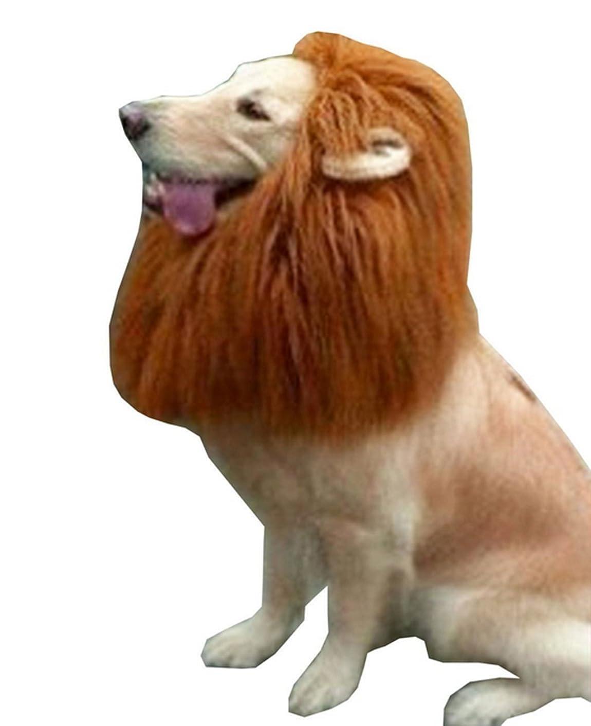 血色の良い気味の悪い糸オジーのしっぽ 可愛い 犬用リボン 7個セット 8点セット ヘアーアクセサリー ヘアピン サングラス (水色)