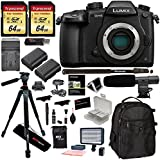 Panasonic Lumix DC-GH5 Mirrorless Micro Four Thirds Digital Camera Body, 2X Transcend 64GB, Professional Video LED Light, Microphone, Accessory Bundle