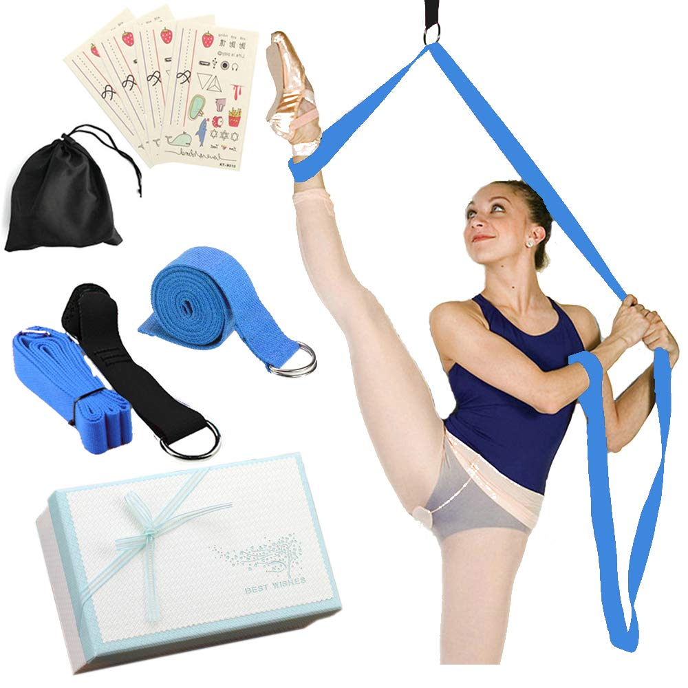 Amazon.com : Door Flexibility Stretching Leg Strap & Yoga ...