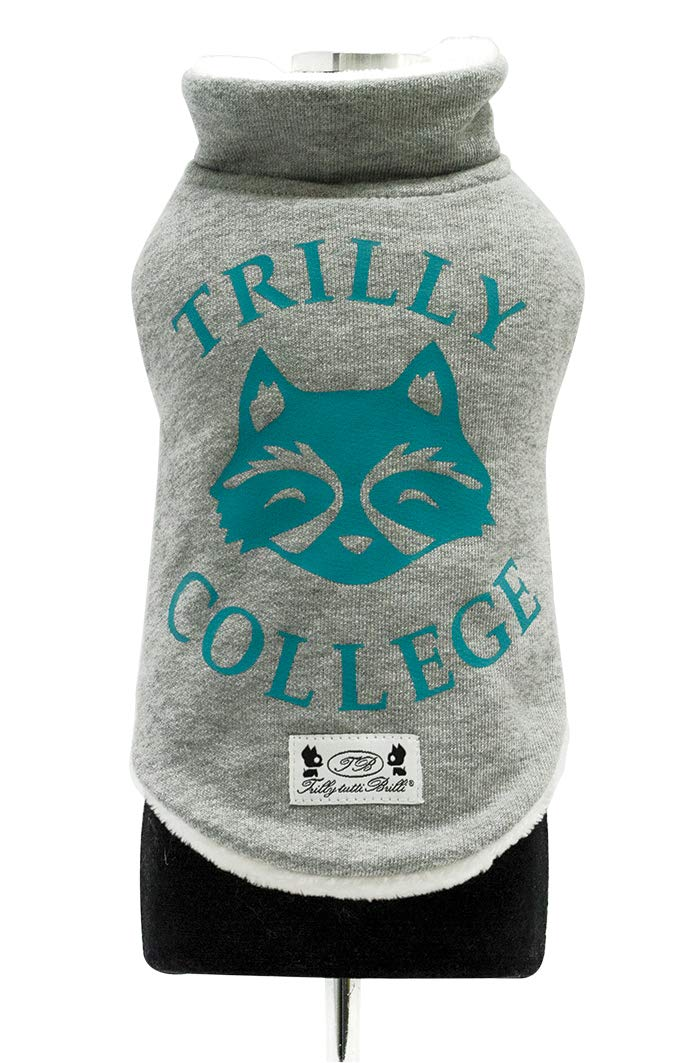 Trilly tutti Brilli Mauger Sweatshirt with Plush interior and Thermal Vinyl Application, Light bluee, Small