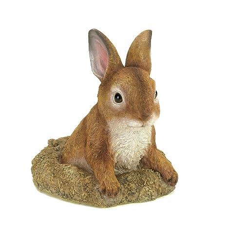 Amazon.com : Home Locomotion Curious Bunny Garden Decor : Garden ...