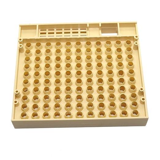 Gooday Nicot abeja reina cría sistema para Apicultura plástico ...
