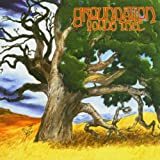 Young Tree [Import allemand]