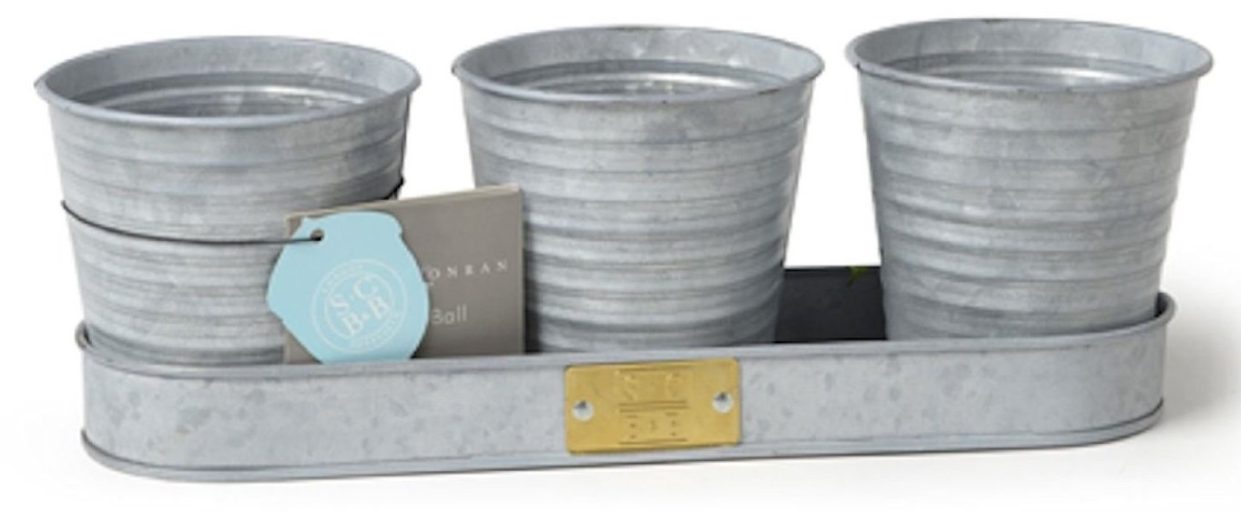 Burgon and Ball Sophie Conran Set of 3 Herb Pots on a Tray in Galvanised Metal GSCHERBGALV