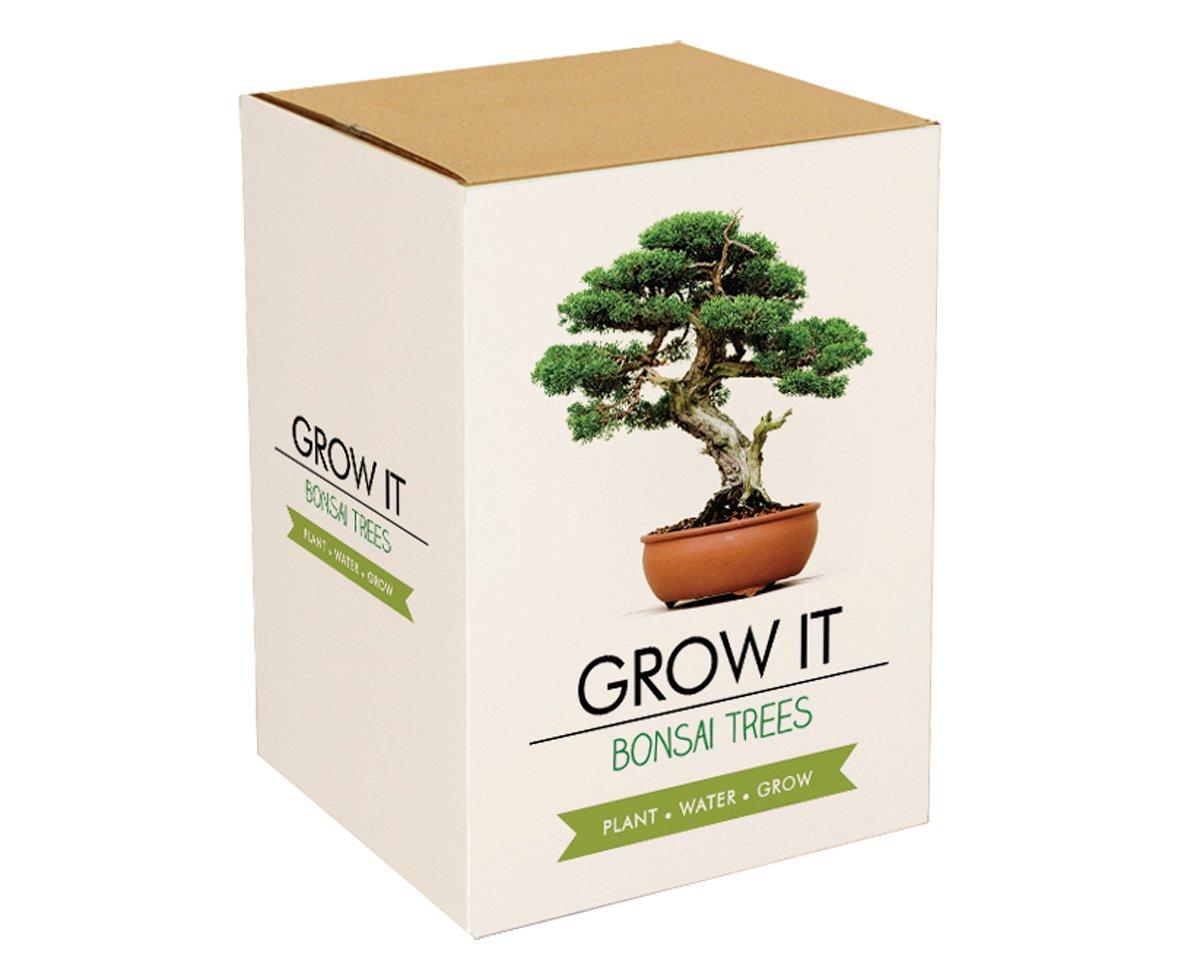 Gift Republic Grow It Geschenkset Bonsai-Pflanzset GR200006