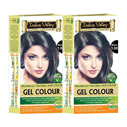 Indus Valley Organically Natural Permanent Herbal Hair Color Black 1.0- Twin (Removing Permanent Hair Color)
